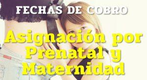 La ANSES informó las fechas de cobro para la Asignación por Prenatal y Maternidad