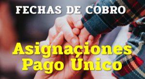 La ANSES informó las fechas de cobro para Asignaciones de Pago Único: Matrimonio, Nacimiento y Adopción